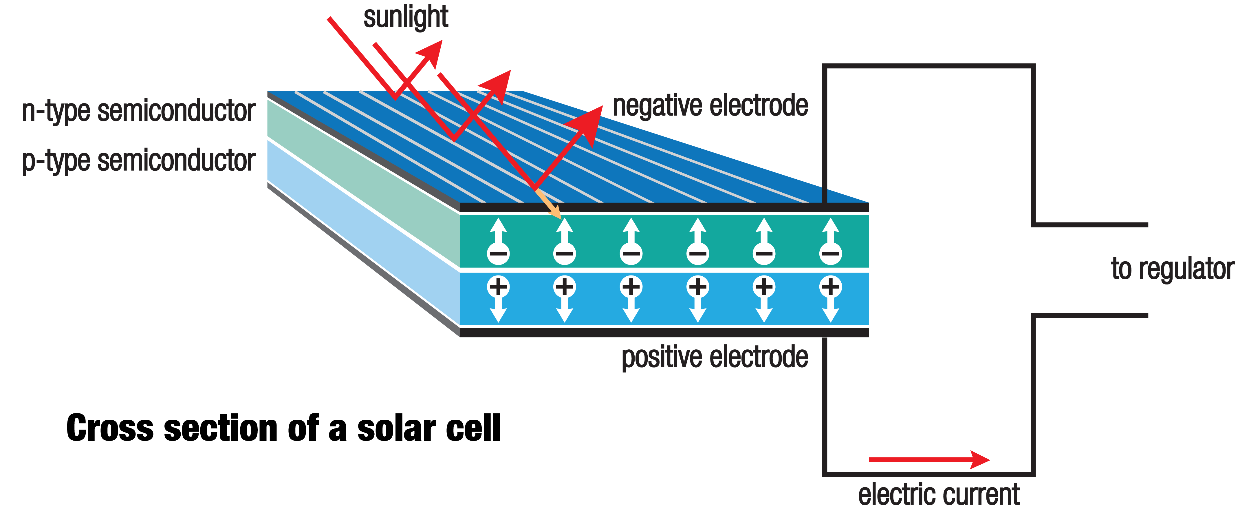 how solar panel works cell